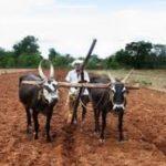 उत्तराखंड किसान पेंशन योजना|ऑनलाइन आवेदन