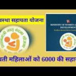 [पंजीकरण] गर्भावस्था सहायता योजना| ऑनलाइन आवेदन| एप्लीकेशन फॉर्म