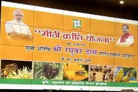 झारखण्ड मीठी क्रांति योजना|संपूर्ण जानकारी| jharkhand mithi kranti yojana