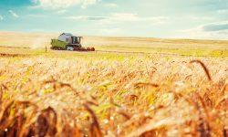 कैसे खरीदें खेती के लिए जमीन? डॉक्यूमेंट और प्रोसेस (दस्तावेज और प्रक्रिया)