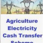 AP Electricity Cash Transfer Scheme 2020|Online Form