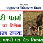 [फॉर्म] बकरी पालन लोन योजना 2021| ऑनलाइन आवेदन| एप्लीकेशन फॉर्म