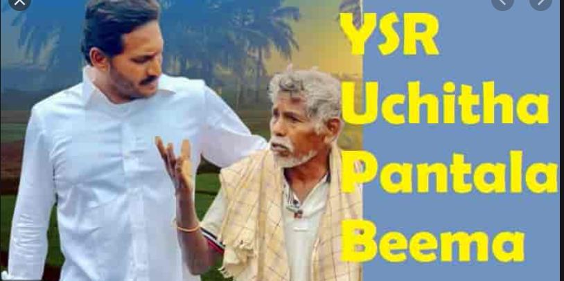 Ysr Uchitha Pantala Bheema